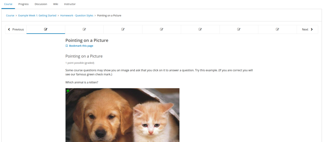 A screenshot from one of Open edx's Components, the LMS. Shown is a problem that has the learner pick out which animal is a kitten.